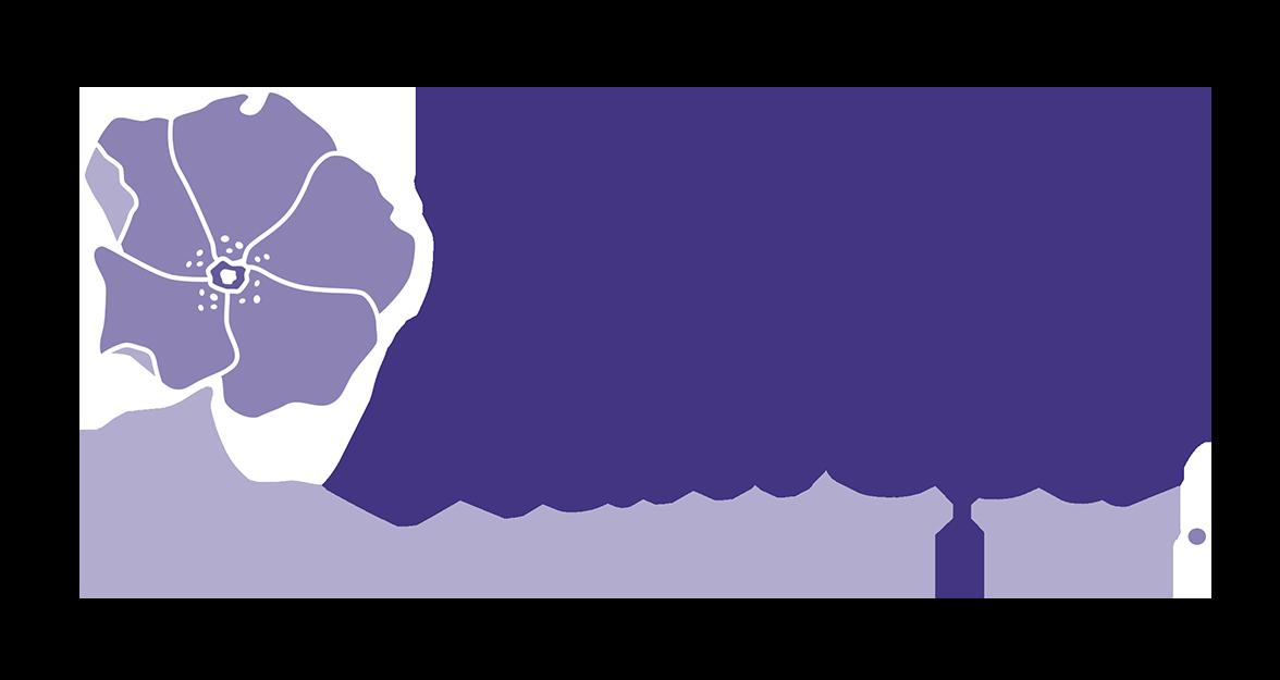 Beach Plum Spa Website